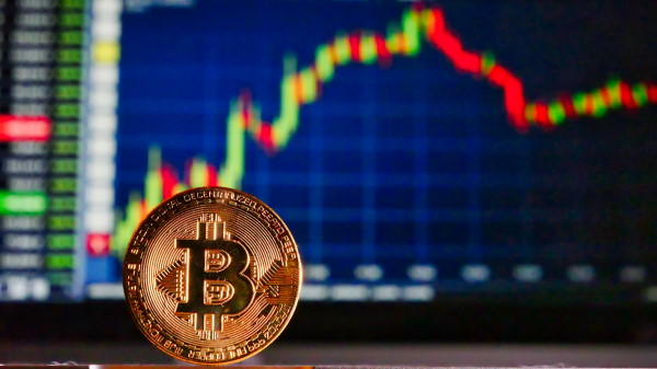 Bitcoin investing portfolio